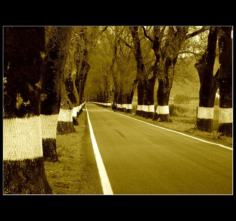 ... A wonderful road ... II