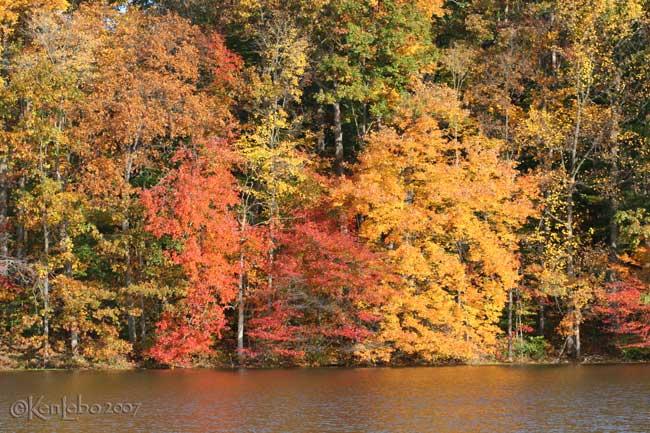 Green Hills Lake, PA 1