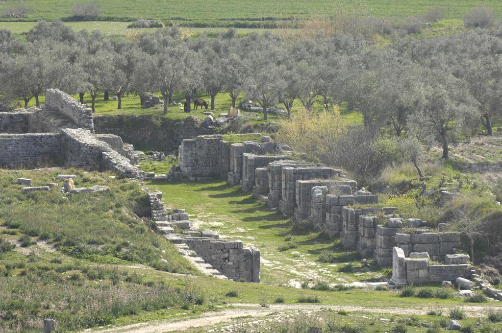 Miletus 2007 4550.jpg