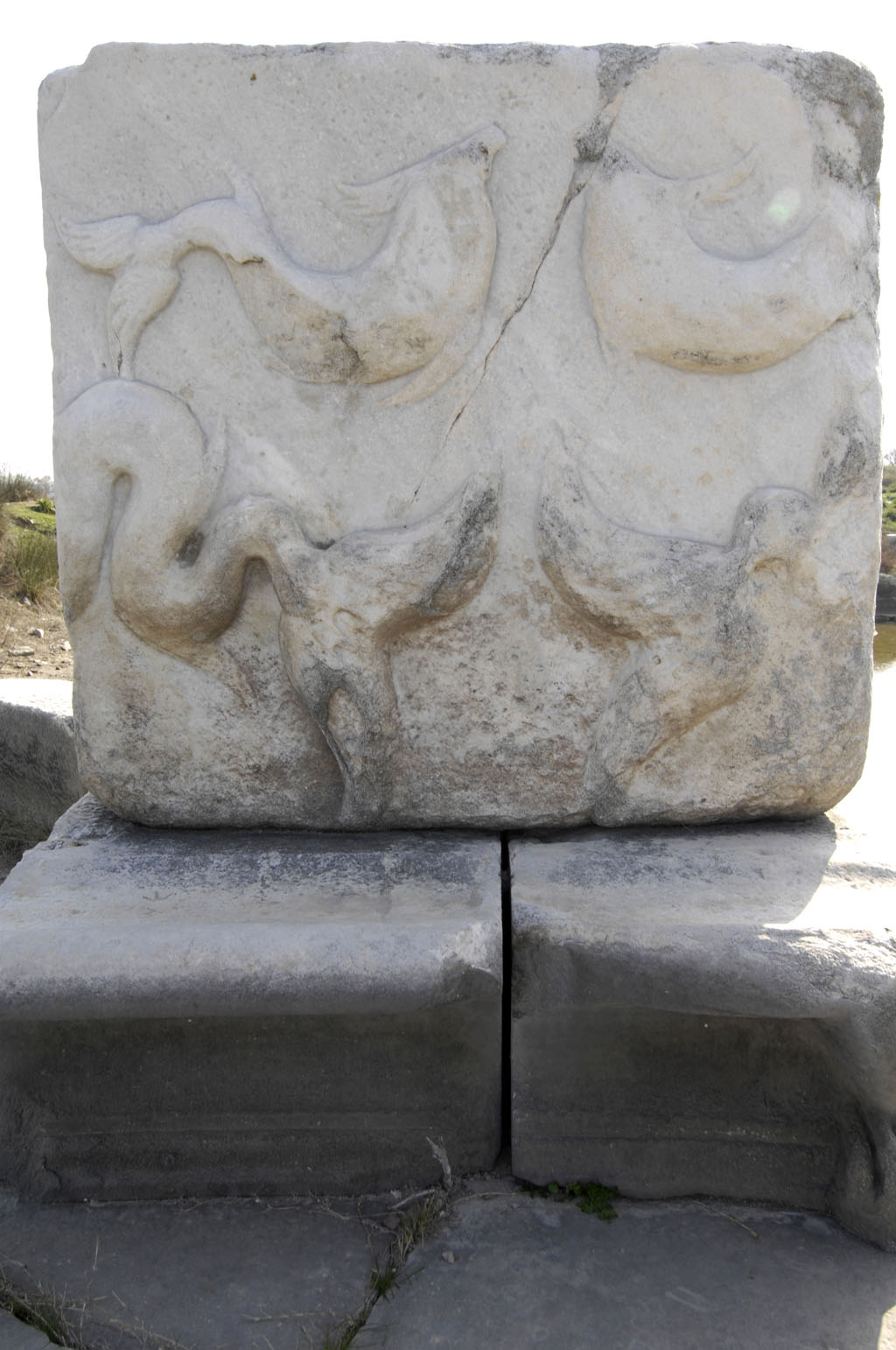 Miletus 2007 4569.jpg