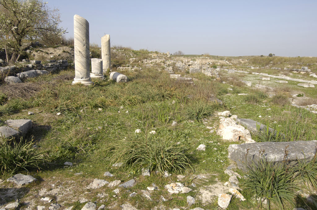 Miletus 2007 4609.jpg