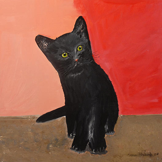 Black Kitten painted in acrylics on 18 inch x 18 inch deep edge canvas for £75
