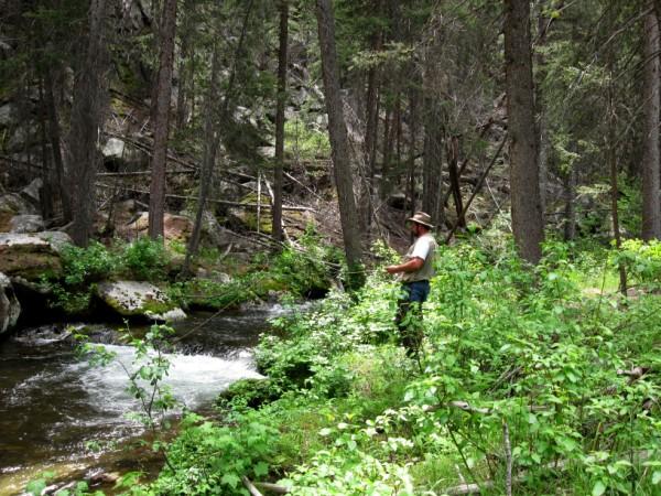 Fishing for Cutthroats