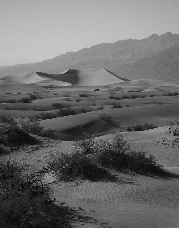 Sand Dunes Black and White.jpg