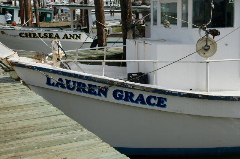 Lauren Grace