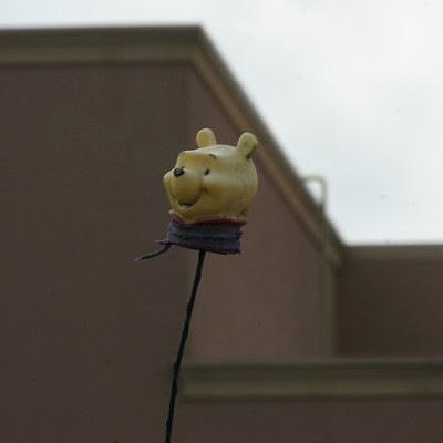 Pooh Head