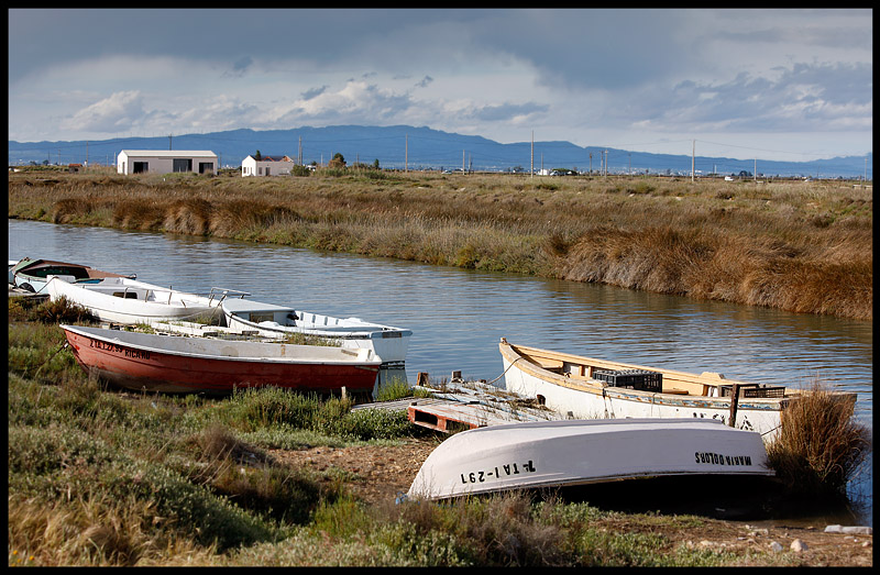 One of many canals in the Ebro delta