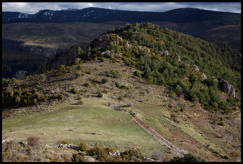 Sierra de Boumort  - Vulture territory
