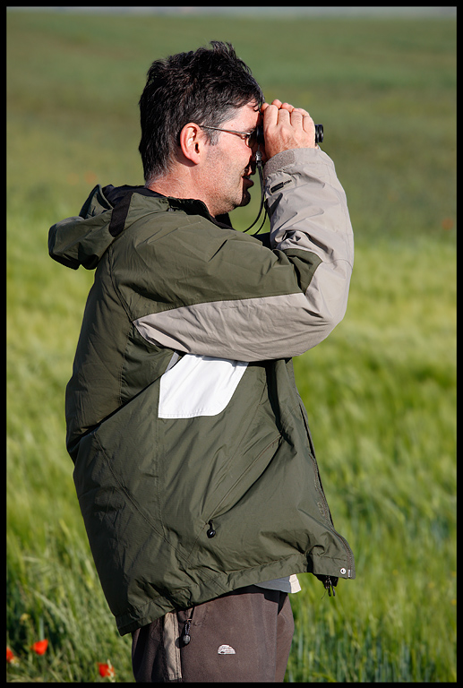 Jordi Bas looking for Little Bustards