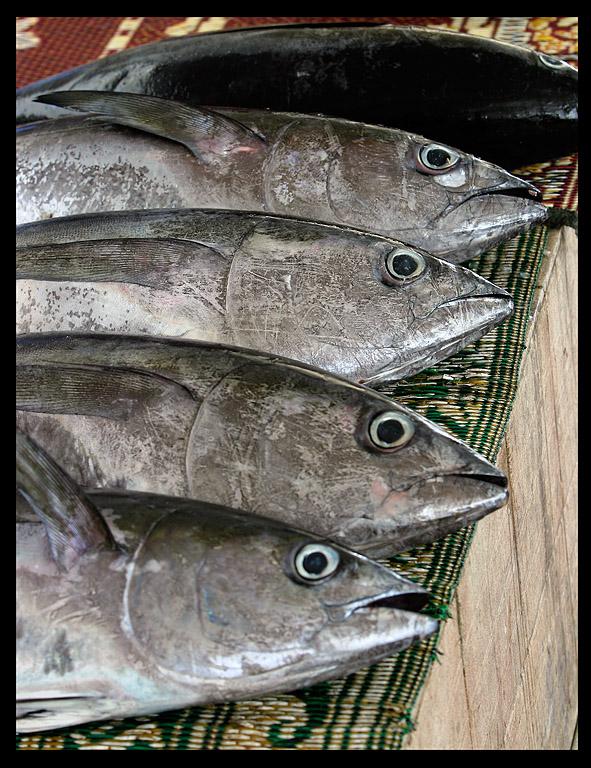 Mutrah fishmarket