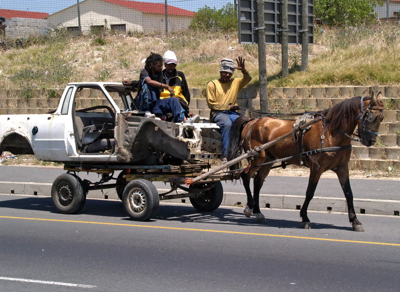 Horse and Bakkie