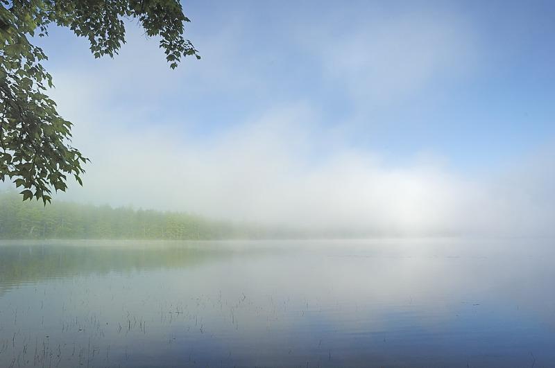 7/30/07 - Morning Mist