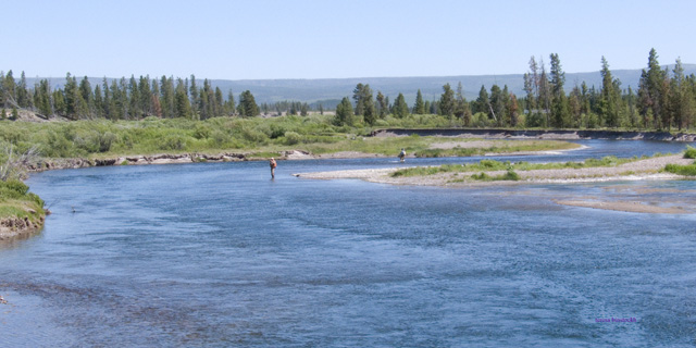 zP1000711 Bison habitat with people fishing on Madison River.jpg