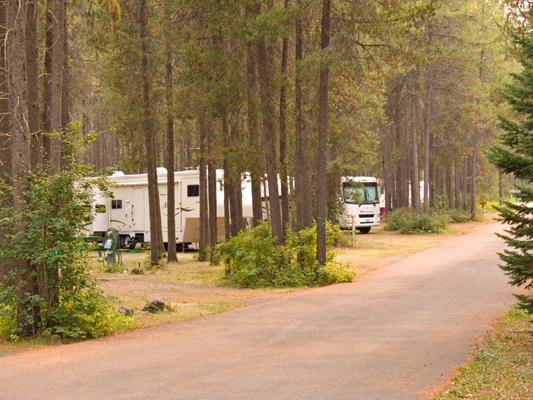 zP1010597 Site 11 amid trees awaits you at SanSuzEd.jpg