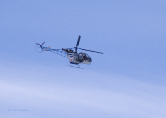 zP1030637 Helicopter enroute northwards in RNMP.jpg