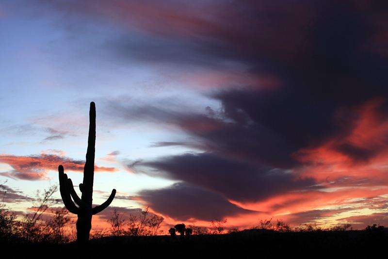 IMG_8454 Sunset.jpg