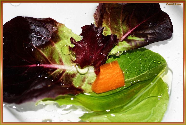 Salad Floating