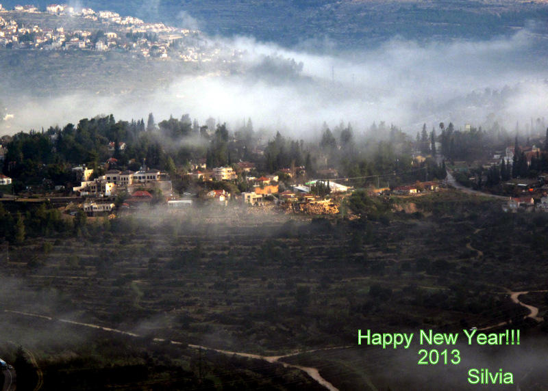 Happy New Year!!!2013!!!!
