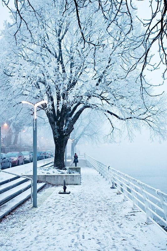 Freezing Fog 2