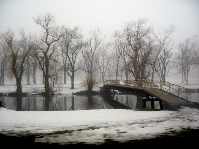 elliot creek park