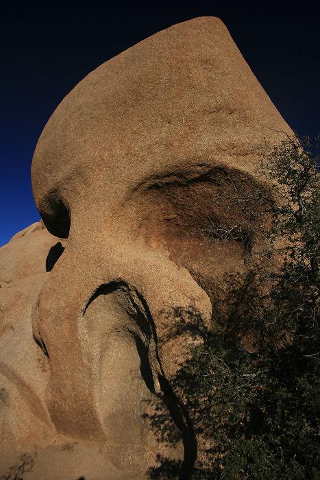 1Skull Rock.jpg