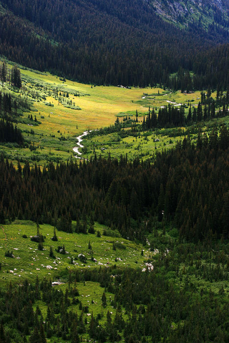 Lower Spider Meadows