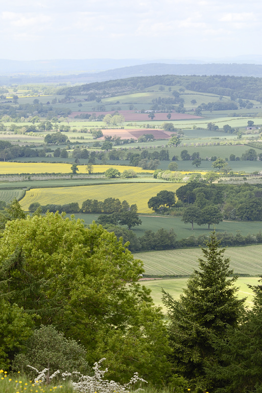county patchwork seen from Oyster Hill