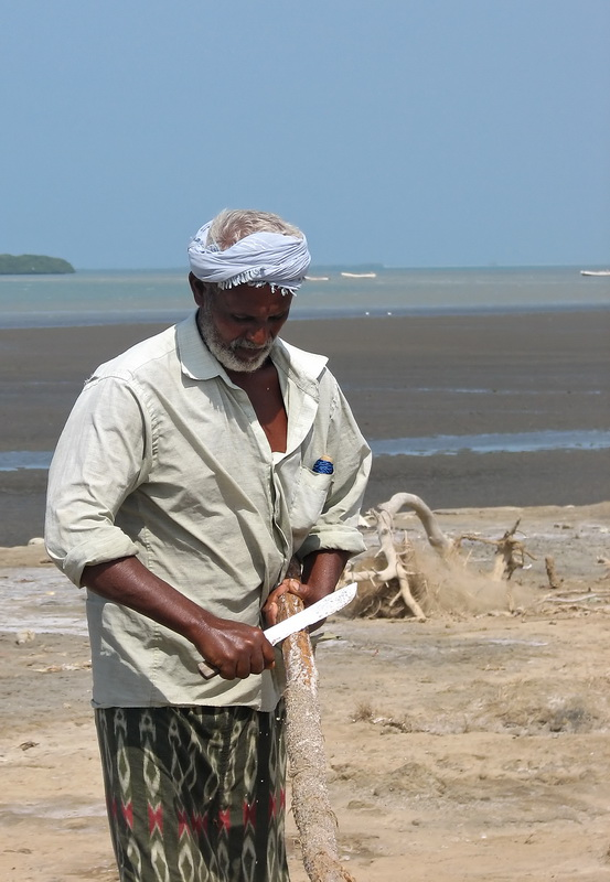 Fisherman, Al Urj