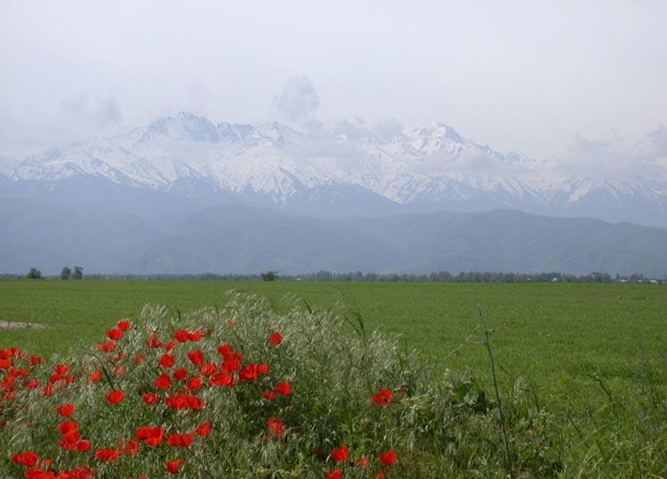 TienShan Mountains Almaty