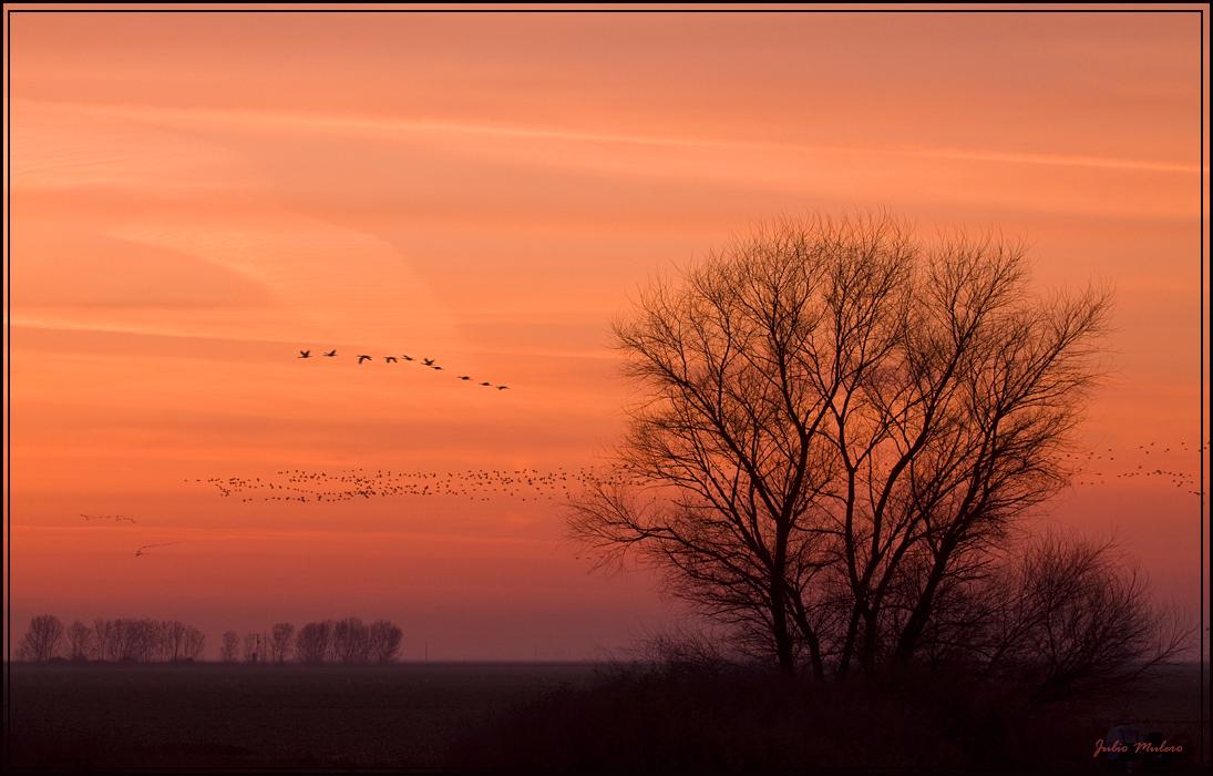 Merced Sunrise