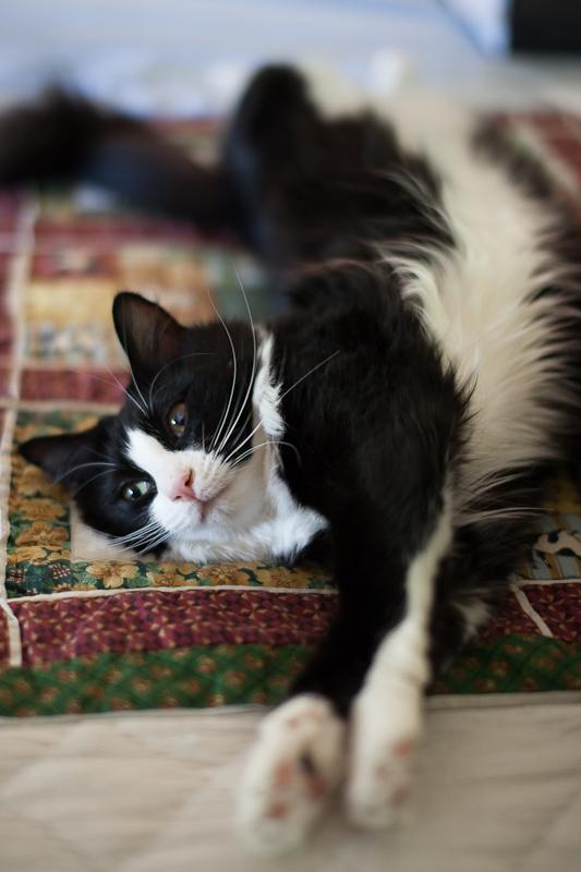 Peep Stretching