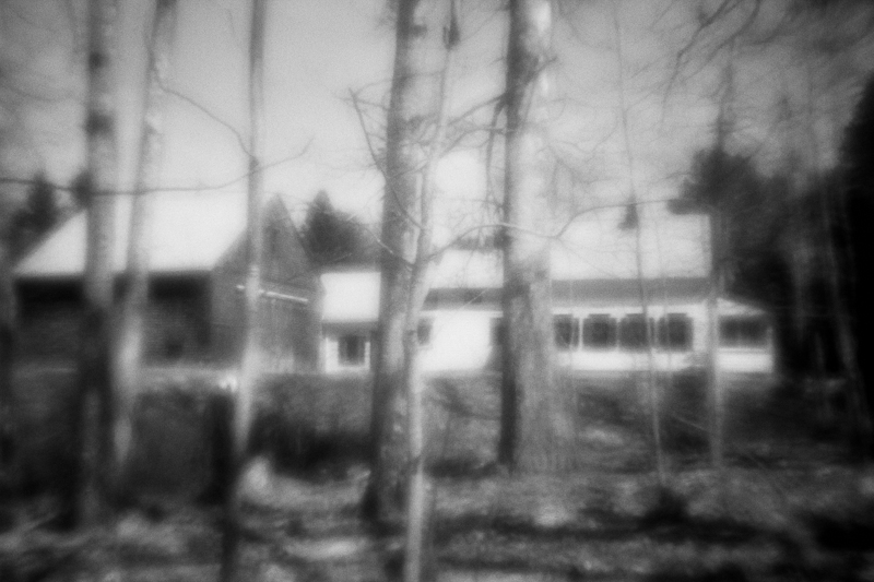 House and Barn Through Trees, Monochrome