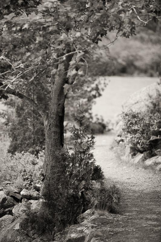 Walking by Jordan Pond