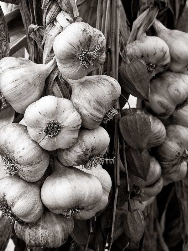 Strung Garlic