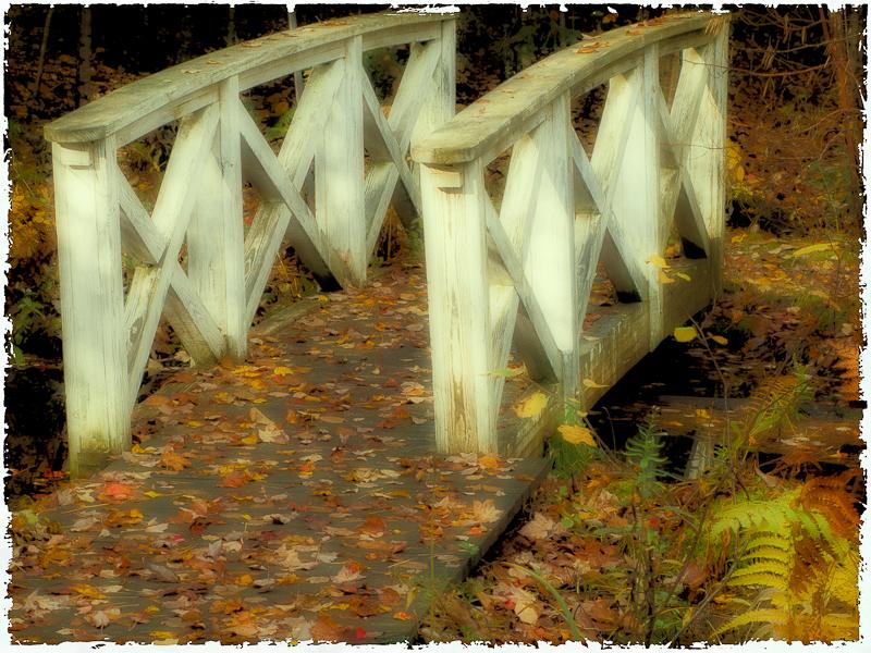Little Bridge in Birdsacre #2