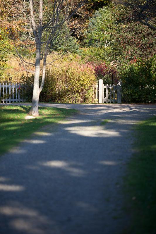 Gate Near Path Beginning