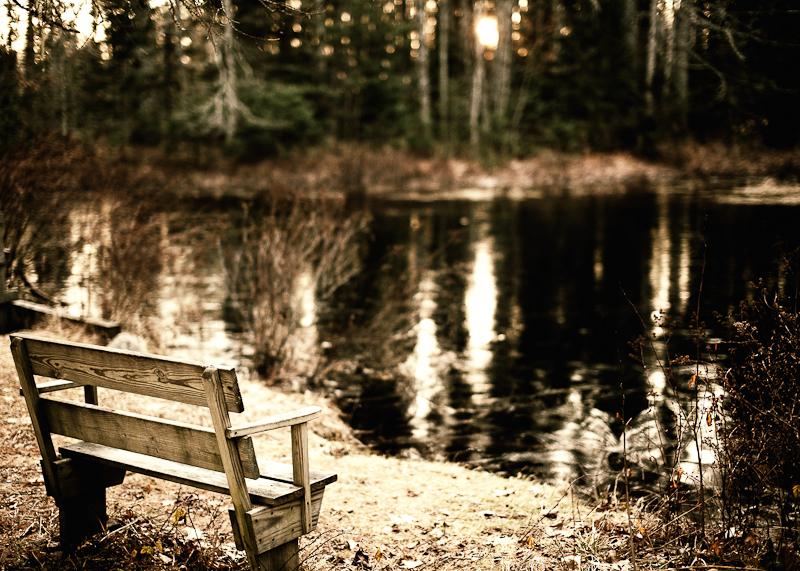 Bench by Frozen Pond, Stylized