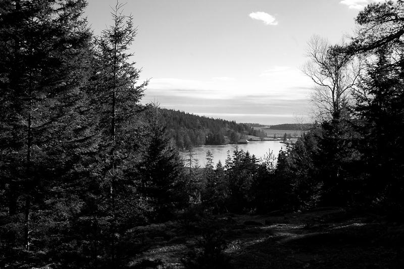Little Long Pond Overlook with Boathouse Mono