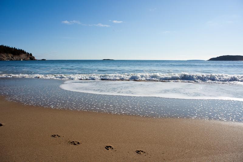 Winter Sand Beach #1