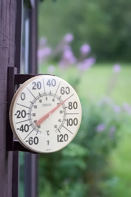 Workshop Thermometer #1