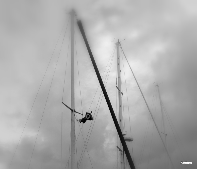 The masts today... mmmmmm... well maybe not quite paradise...