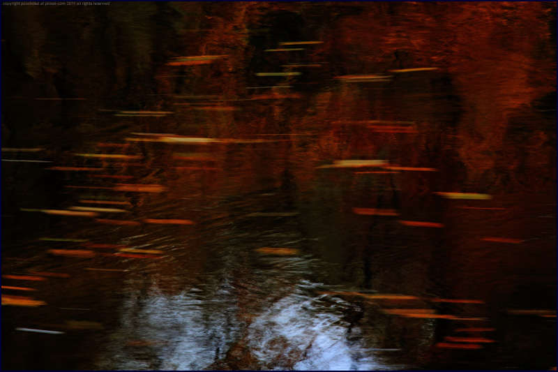 autumn reflections in moving water, River Avon