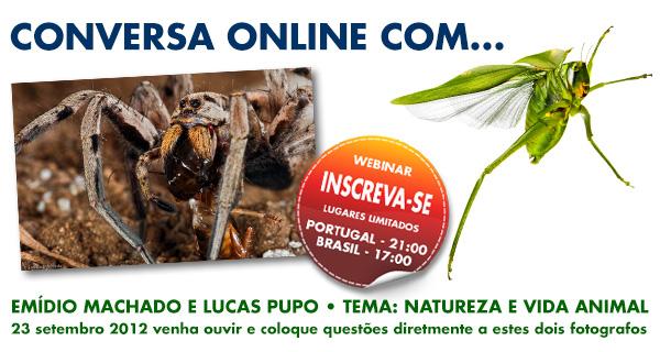 Conversa online em direto com o fotógrafo português, Emídio Machado e com o brasileiro Lucas Pupo