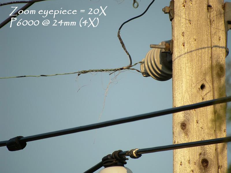 telephonepole24mm_5056b.jpg