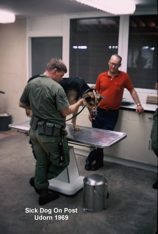 Udorn  Sick Dog On Post  1969-70