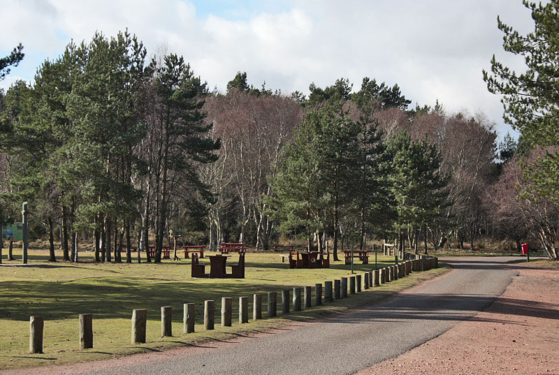Tentsmuir - Kinshaldy picnic area and car park