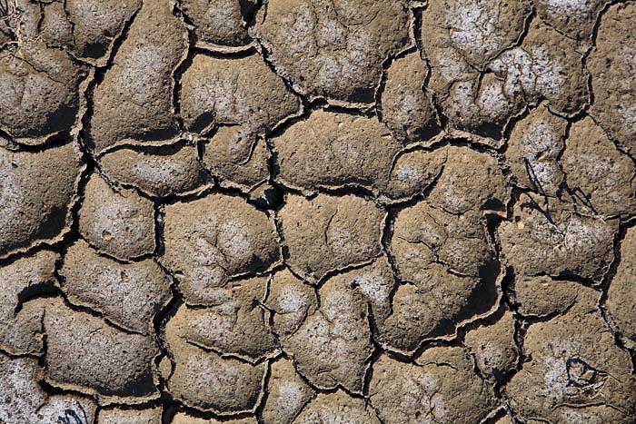 Soil in solina tla v solinah_MG_4957-1.jpg