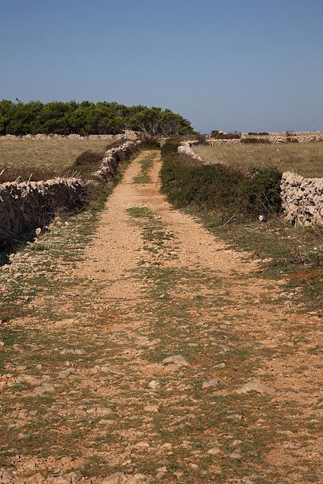 Path and stone fences pot in kamnite ograje_MG_4976-1.jpg