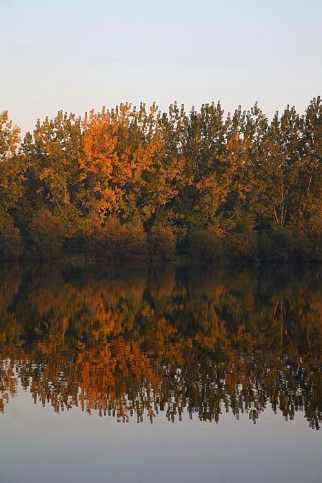 Autumn reflection jesenski odsev_MG_6934-1.jpg