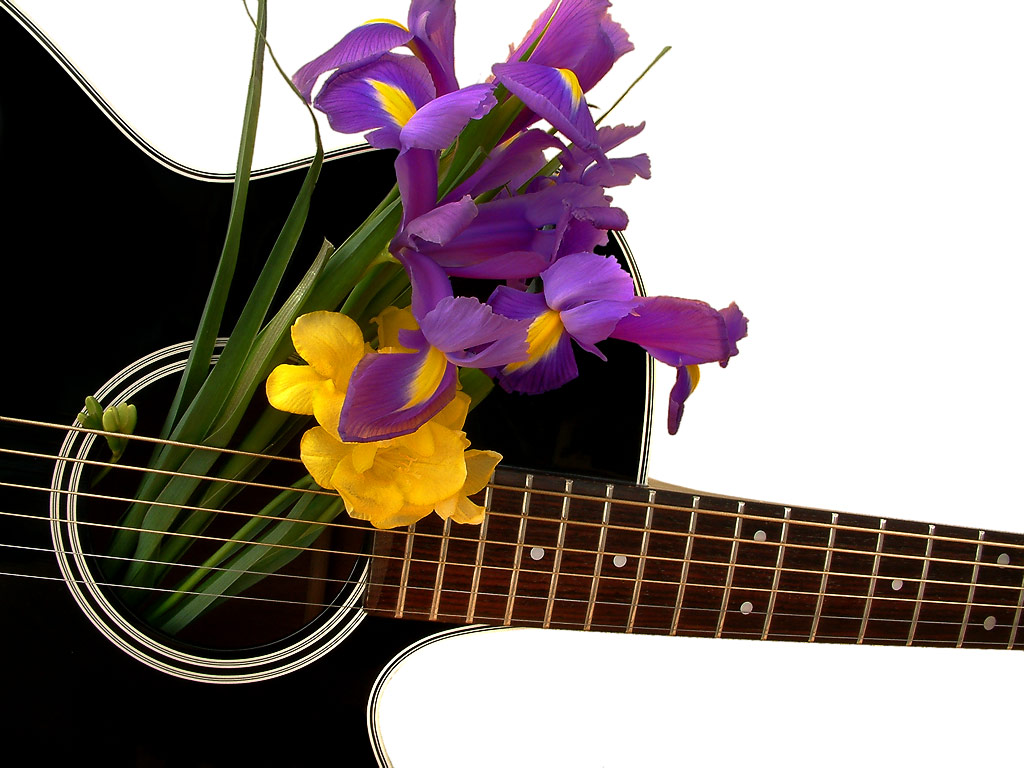 Black Takamine and flowers